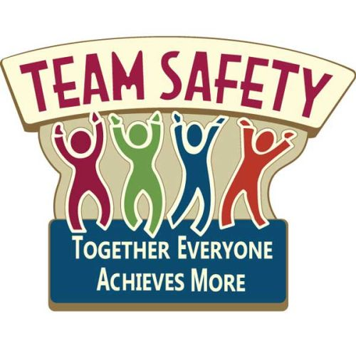 AD010433S Team Safety Lapel Pins