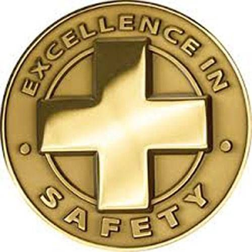 AD013301S Excellence In Safety - Lapel Pin