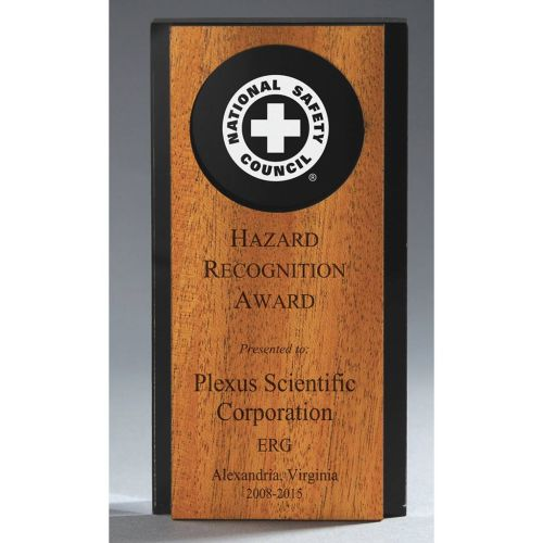 AD0138669 Contrast Safety Award Plaque